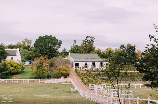 Langkloof Roses Wedding Venue Farm Western Cape Swartland