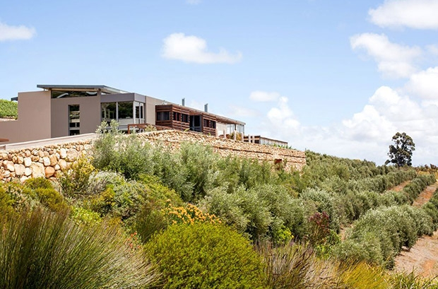 Hidden Valley Wine Estate Wedding Venue Photo by Expressions Photography
