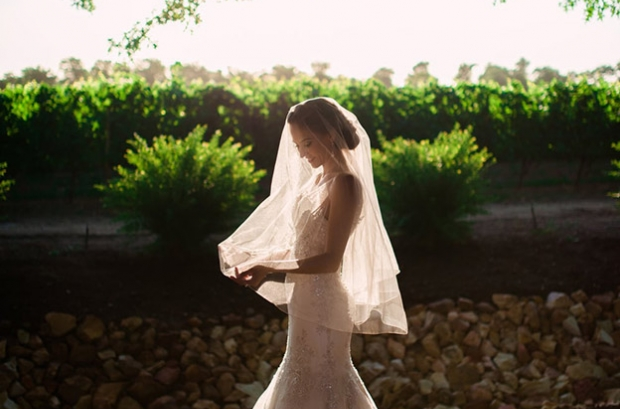 Photograph of Bride in Vineyards by Matthew Carr Photography Cape Town