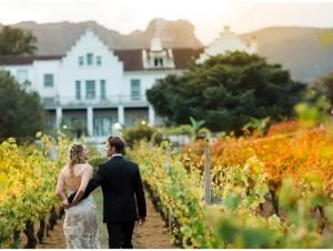 Cape Town Wedding Venue Wine Estate