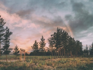 Cherry_Glamping_Accommodation_Wedding_Venue_Elgin_Cape_Winelands_View