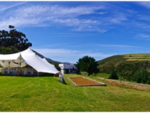 Beaumont Family Wines Wedding Venue Cape Winelands