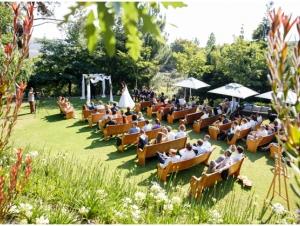 Cape Town Winelands Elgin Wedding Venue
